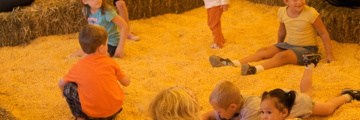 cowvins-kiddie-korral-youngs-dairy