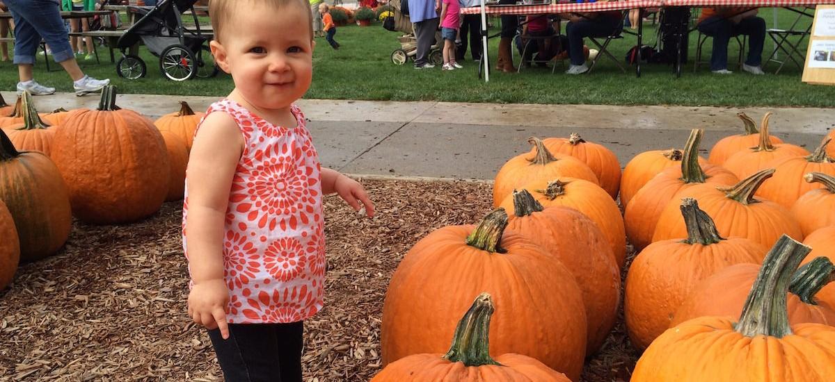 fall-farm-pumpkin-festival