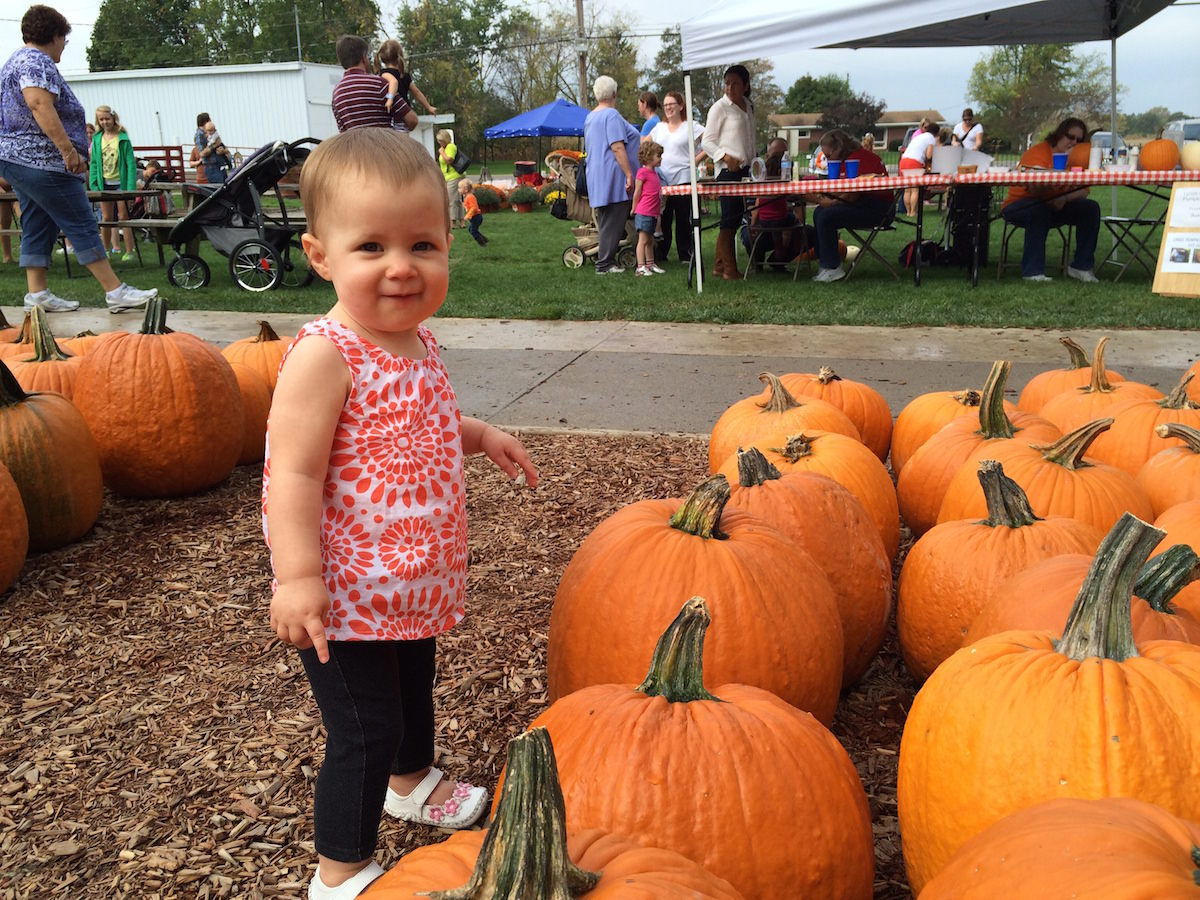 Annual Fall Farm Pumpkin Festival Young S Jersey Dairy