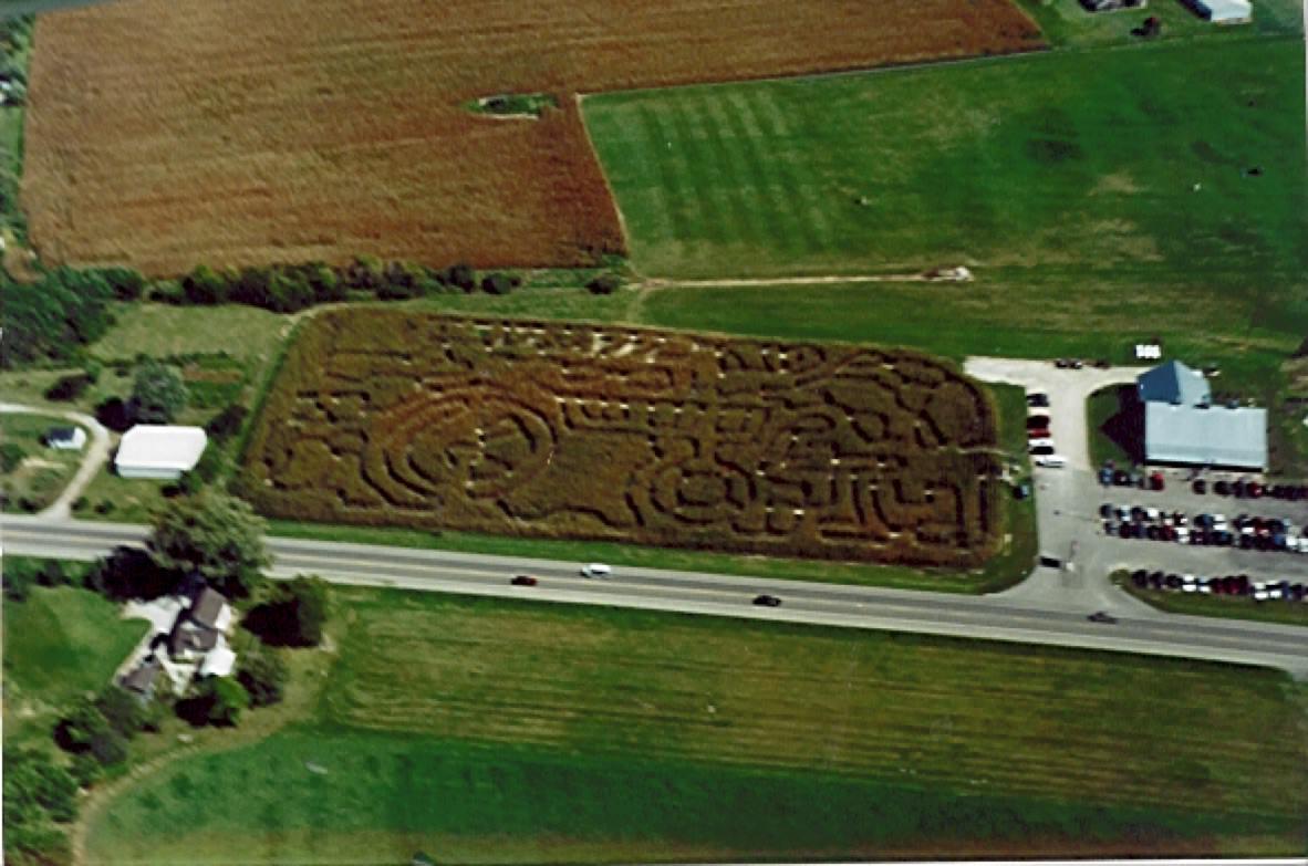 corny maze